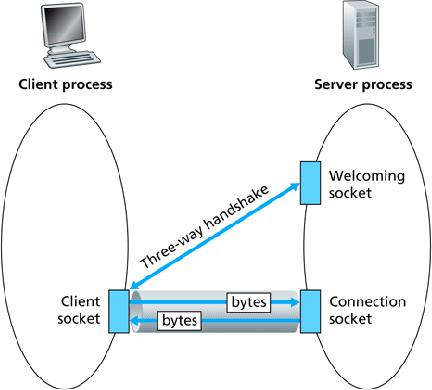 TCP and UDP Socket Programming